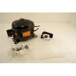 405504103 ELECTROLUX N°1 Compresseur R600 pour réfrigérateur